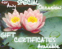 Massage Gift Certificates Available for any Special Occasions